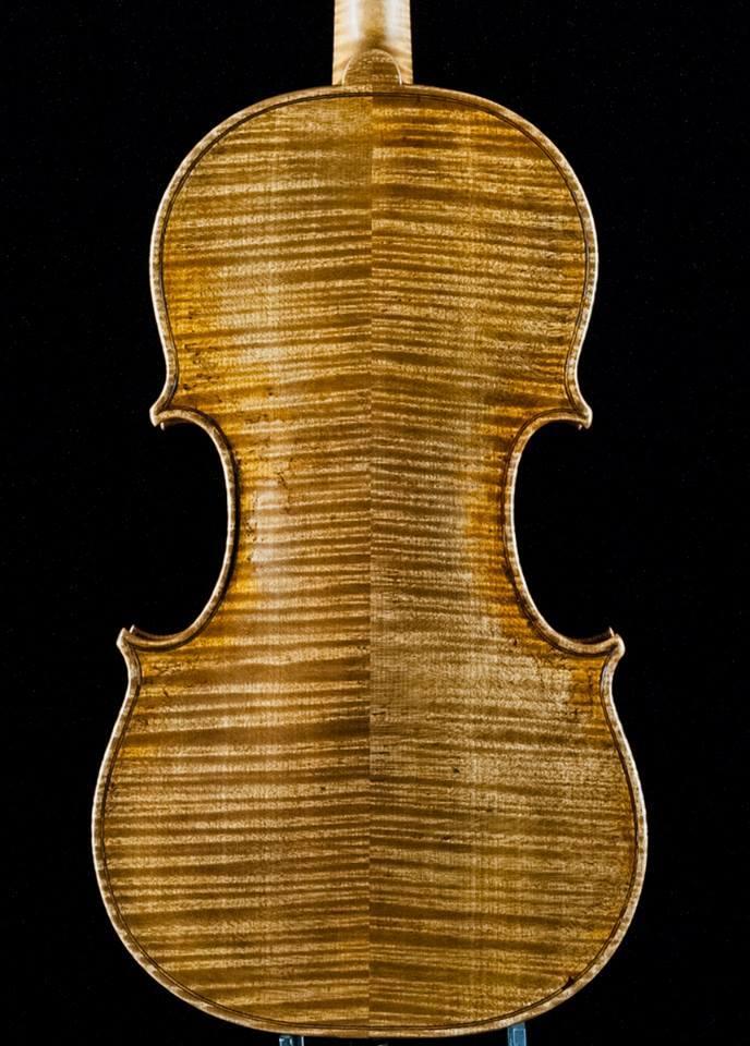 fondo-violino-001