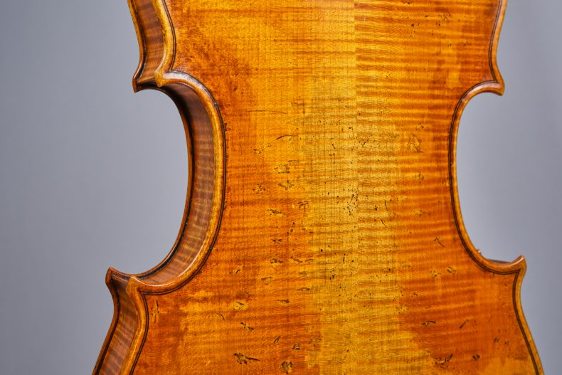 viola-back-detail